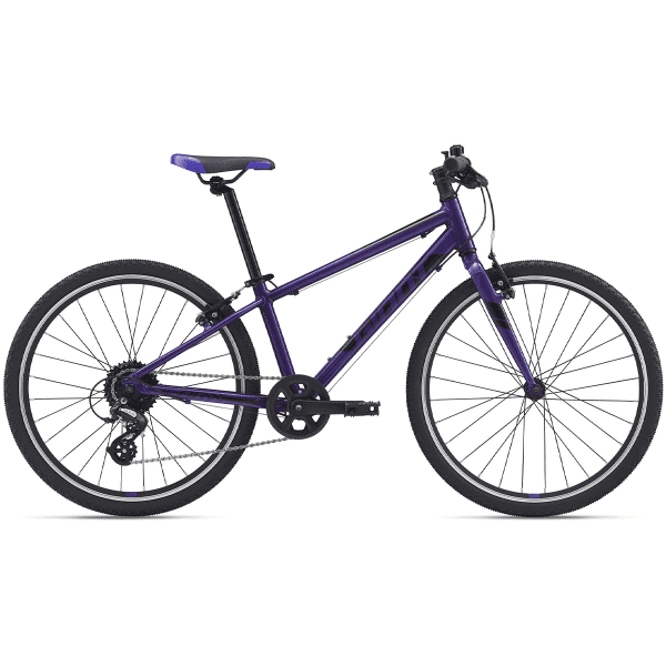 ARX 20 inches - Purple